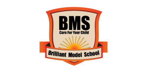 BRILLIANT MODEL SCHOOL